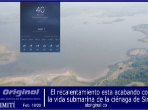 El recalentamiento está destruyendo la vida submarina de la ciénaga de Simití